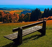 Summertime scenery and the bench to watch it by Patrick Jobst