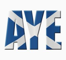 Scottish flag Vote Aye by stuwdamdorp