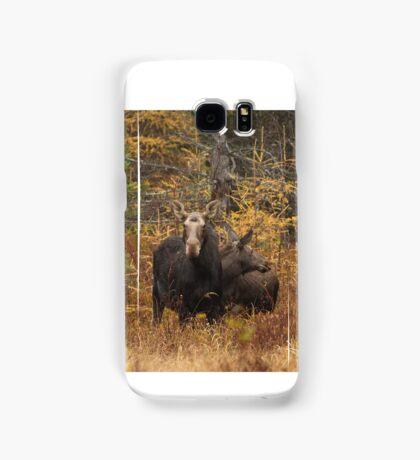 Moose - Algonquin Park, Canada Samsung Galaxy Case/Skin
