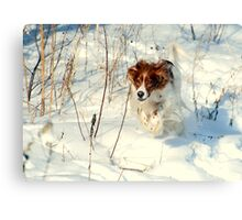 A Romp in the Snow Canvas Print