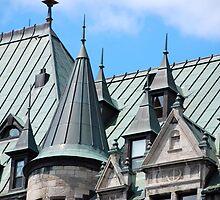 Frontenac Roofscape by John Schneider