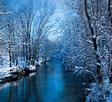 Winter on Simpson Creek by LeeAnne Emrick