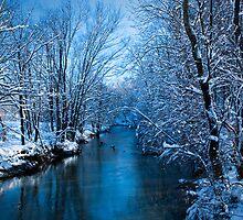 Winter on Simpson Creek by LeeAnne Emrick