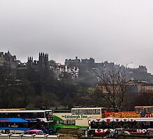 Pick  A Tour Bus? by Lynne Morris