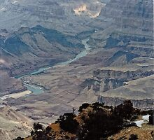 The Grand Canyon to the Colorado River below. by Carla Maloco