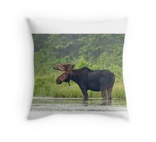 Bull Moose - Algonquin Park, Canada Throw Pillow