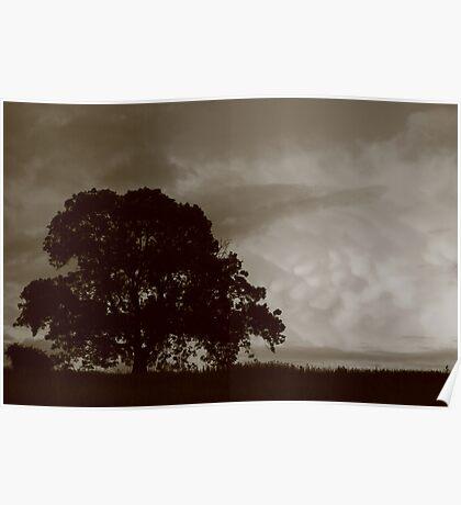 Mammatus Clouds Poster