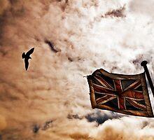 Sky Flag. by Sue Smith