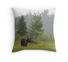 Grassy marsh moose - Algonquin Park, Canada Throw Pillow