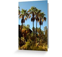 Rare Ancient Red Cabbage Palms,N.T. Greeting Card