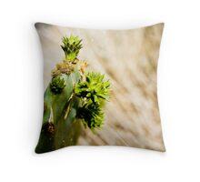 A Spring Sprouting Cactus Throw Pillow