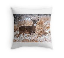 A Regal Stance - White-tailed Buck Throw Pillow