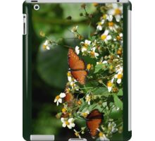 Beautiful Orange Danaus Gilippus Queen Butterflies iPad Case/Skin