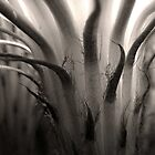 Cactus Bloom in Sepia by Ellen Cotton