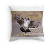Blue Jay Lands Throw Pillow