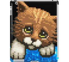 AQUA KITTY - Sad Cat iPad Case/Skin
