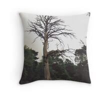 Old Mr Deadwood,Still Stands Out. Throw Pillow