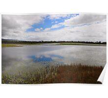 Reflective Mareeba Wetlands Poster