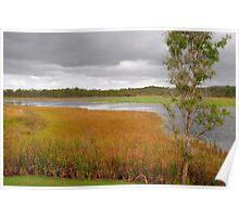 Cloudy Mareeba Wetlands Poster
