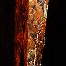 Standley Chasm,McDonell Ranges,N.T. by Joe Mortelliti