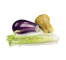 Aubergine, Squash and Celery Photographic Print