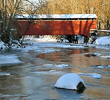 Foxcatcher Bridge Over Big Elk Creek by Monte Morton