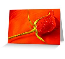 *SEEING RED* Greeting Card