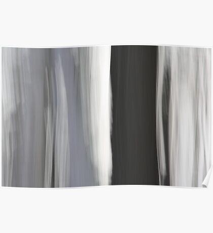 White & Black Trees Poster