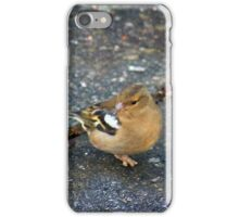 Chatting chaffinches iPhone Case/Skin