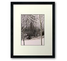 Frosty Foraging Framed Print