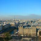 the Parisian Air by LeedenMoon