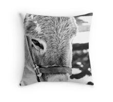 Friendly Donkey Throw Pillow