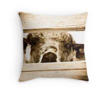 Little Bo Sheep Throw Pillow