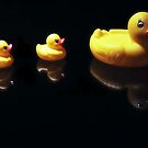 Ducks in Line by terrebo