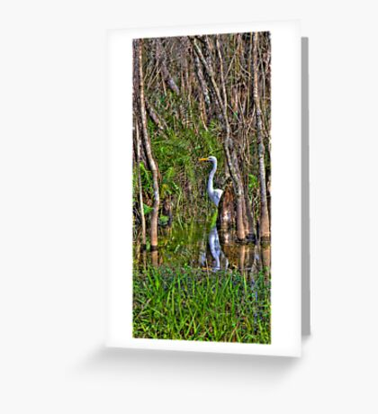 Lurking in the Swamp Greeting Card