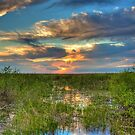Everglades Sunset by njordphoto
