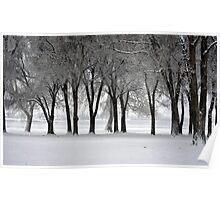 Cold Stillness Poster
