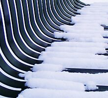 Snowy Bench, Denver's City Park by Thomas Stevens
