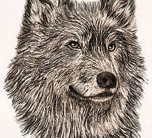 Black Wolf  by emarshall