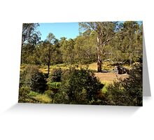 Bindaree Hut,Victorian High Country Greeting Card