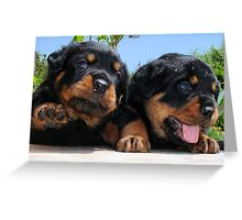 "Rottweiler ""Hi Five"" Greeting Card"