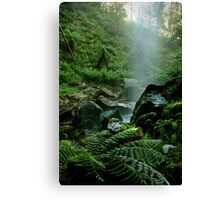 Binderee Falls Victorian High Country Canvas Print