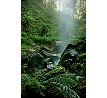 Binderee Falls Victorian High Country Photographic Print