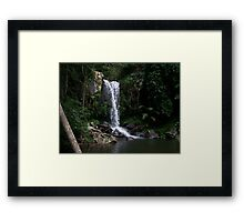 Curtis Falls - Mount Tambourine Framed Print