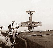 World War 2 Aircraft crash  by Amisdelamer