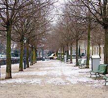Geneva  by Sunil Bhardwaj