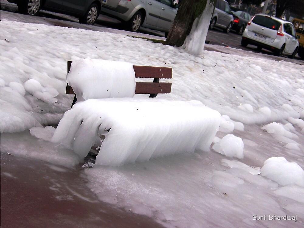 Frozen Bench  by Sunil Bhardwaj