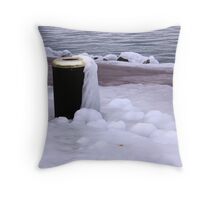 Frozen Bin  Throw Pillow