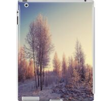 Hug of Frost iPad Case/Skin