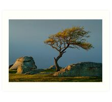 Dog Rocks, Batesford Victoria Art Print